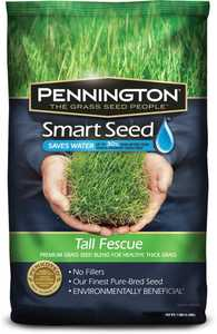 pennington 118502 Pennington Smart Seed Tall Fescue Blend 7lb