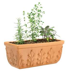New England Pottery 100043049 14-Inch Terra Cotta Floral Window Box Planter