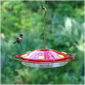 Perky Pet 221 Oasis Design Hummingbird Feeder 16 oz