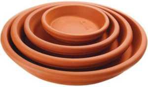 Central Garden 100043036 6-Inch Terra Cotta Plant Saucer