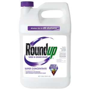 Roundup 5004215 Super Concentrate Weed & Grass Killer 1 Gal