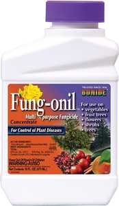 Bonide BP880 Fungonil Fungicide Concentrate 16 Oz
