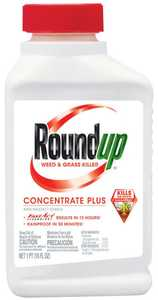 Monsanto 5005510 Roundup Weed & Grass Killer Concentrate Plus, 18% Concentrate, 16-Ounces