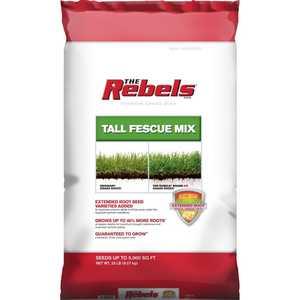 pennington 100519431 Rebel Tall Fescue Mix Powder Coated Seed 20lb
