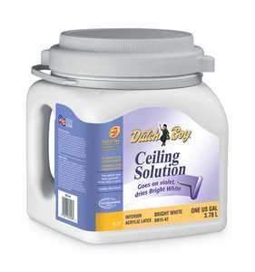 Dutch Boy DB1542-16 Ceiling Solution Paint Bright White Gallon