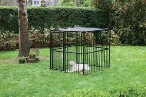 STEPHENS PIPE & STEEL HBK11-13659 5x5x5 ft Laurel View Complete Dog Kennel