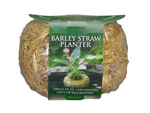 SUMMIT CHEMICAL CO 1138 Clear-Water Barley Straw Planter Small