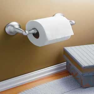 CSI/Moen DN6808BN Sage Brushed Nickel Toilet Paper Holder