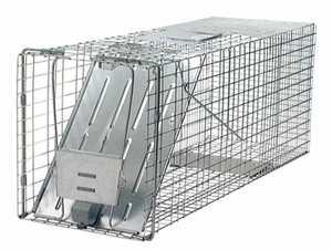 Havahart 1079 Raccoon 1 Door Trap 32x10x12