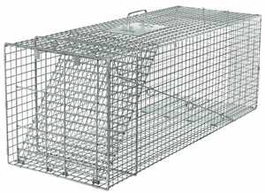 Havahart 1081 Raccoon Trap 42x15x15 1 Door