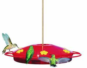 Perky Pet 221 Feeder Hummingbird Oasis 16 oz