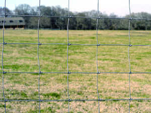 Oklahoma Steel & Wire 0489-0 Fence Sheep/Goat 48 in X 330 ft
