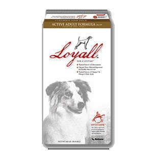 Nutrena 13601440 40-Pound Loyall Active Adult Dog Food