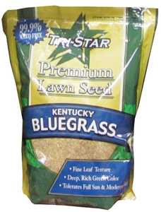 Tri Star Seed 1LB Kentucky Bluegrass Grass Seed 1lb 85/80