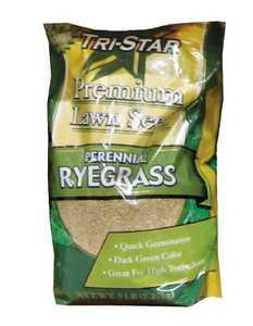 Tri Star Seed 5LB Perennial Ryegrass Grass Seed 5lb