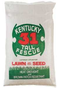 Tri Star Seed 50LB Kentucky 31 Tall Fescue Grass Seed 50-Lb