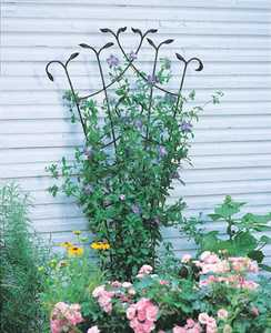 Panacea 89482 Forged Fan Trellis With Leaves Black 80 in