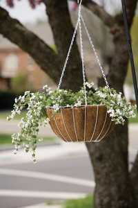Panacea 88504 Growers Hanging Basket With Liner White 14 in