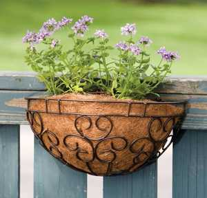 Panacea 88527 Cameo Wall Planter With Liner Brown 16 in