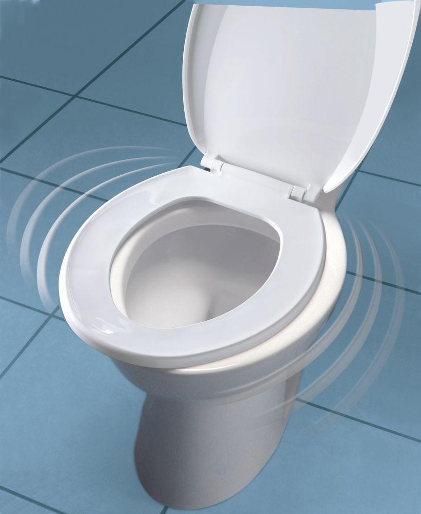Awe Inspiring Round Nextstep Child Adult Toilet Seat White Creativecarmelina Interior Chair Design Creativecarmelinacom