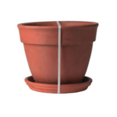 Norcal Pottery 2Q11MZ