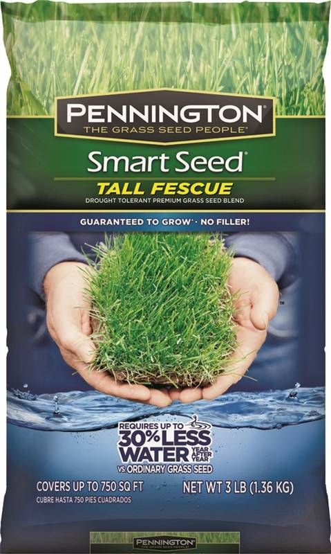 Pennington 100526675