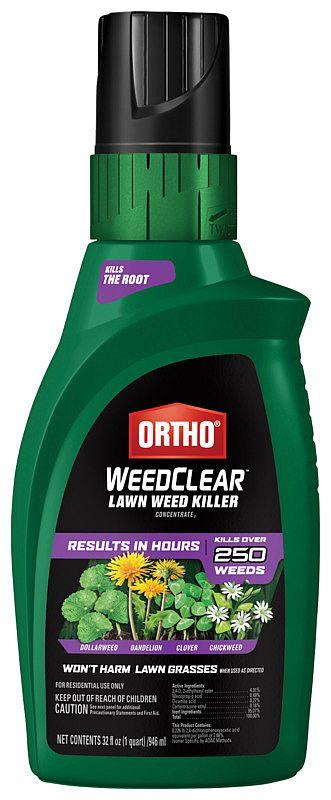 Ortho 449405