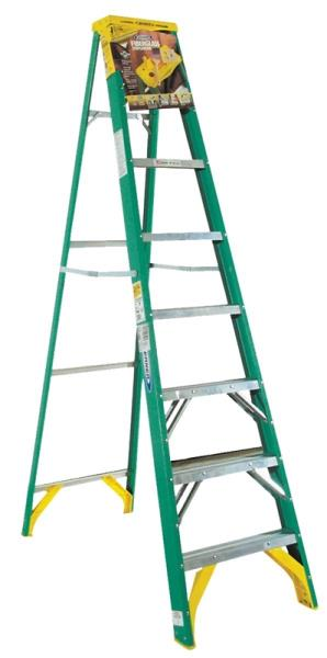 Werner Ladder 5908