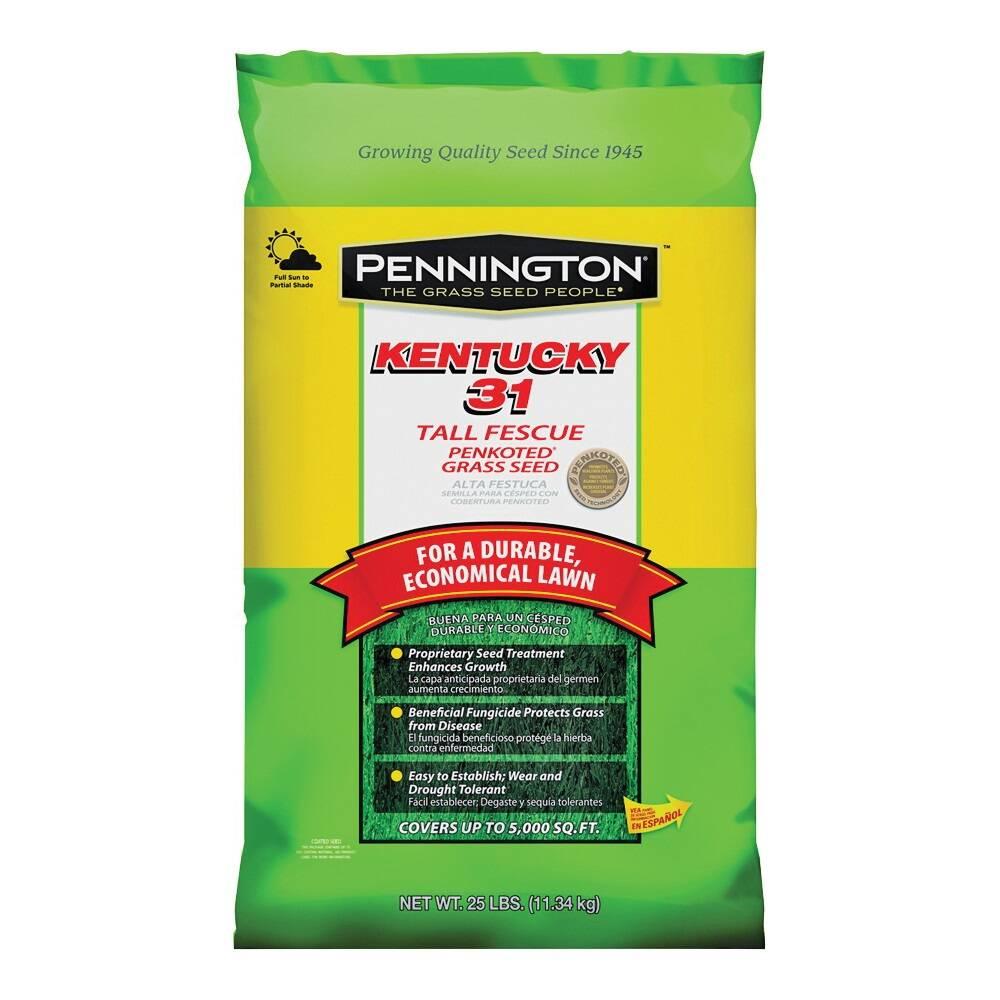 Pennington 100516055
