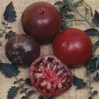 plantation products 41834 tomato black krim at sutherlands. Black Bedroom Furniture Sets. Home Design Ideas