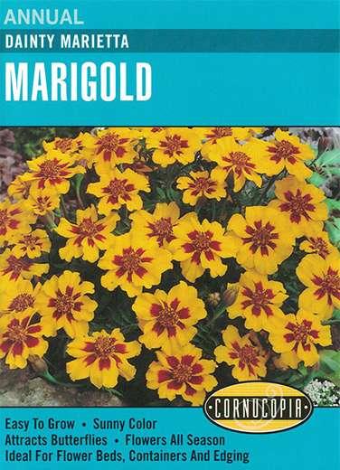 Cornucopia Garden Seeds 234