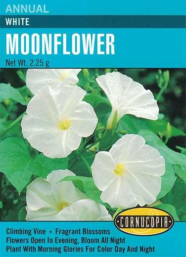 Cornucopia Garden Seeds 122