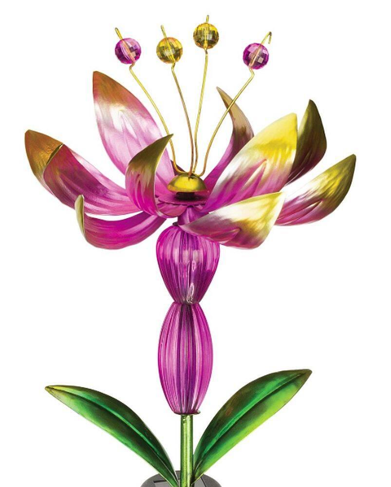 Regal Art & Gift 12505