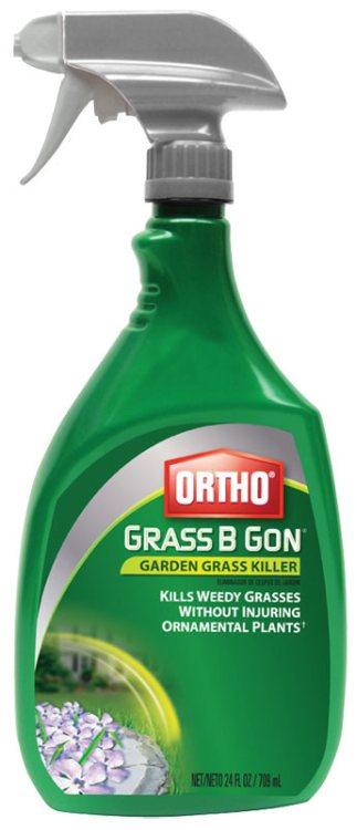 Ortho 0438580
