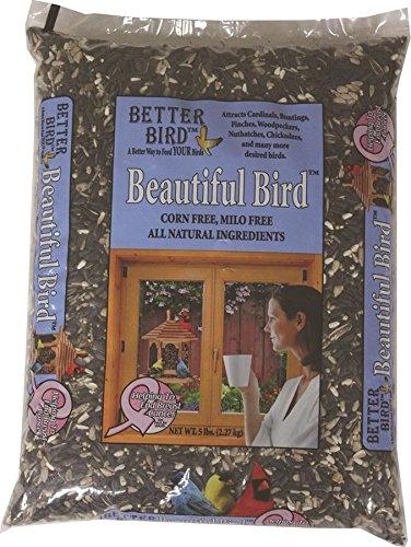 Better Bird 640050