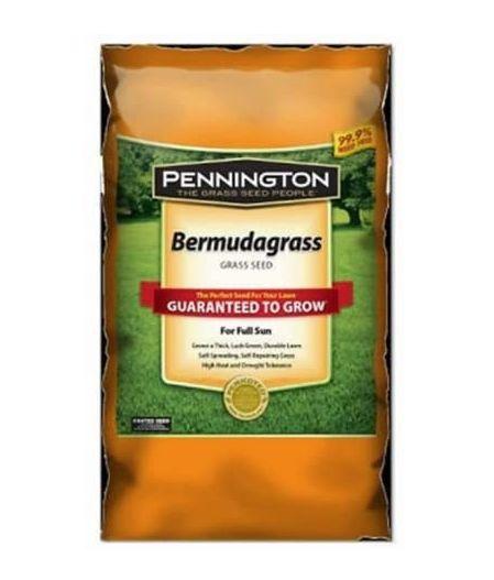 Pennington 100085578