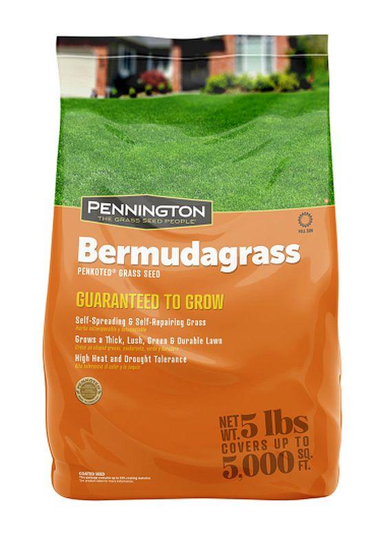Pennington 100524436
