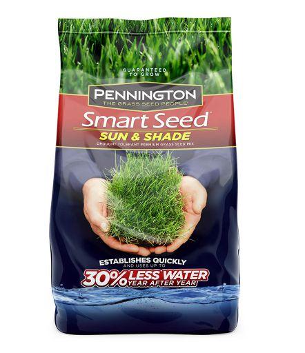 Pennington 100543719