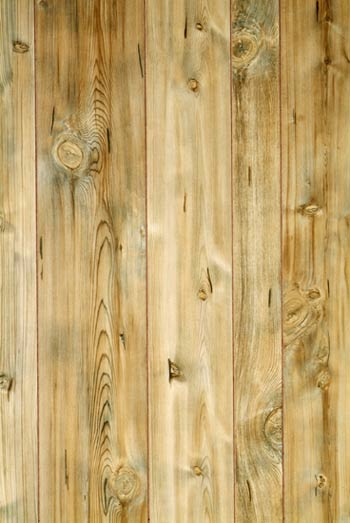 American Pacific 4x8 1 8 Swampland Cypress Decorative Wall