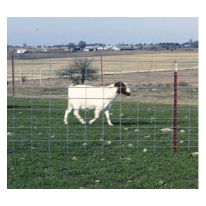 Sheep/Goat Fence Panel 4Ga 42Inx16Ft